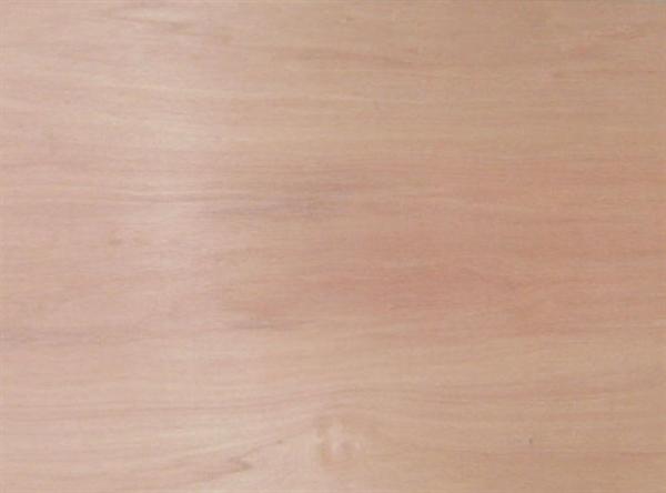 Hydrotek Meranti Marine Grade Plywood Merritt Supply Wholesale